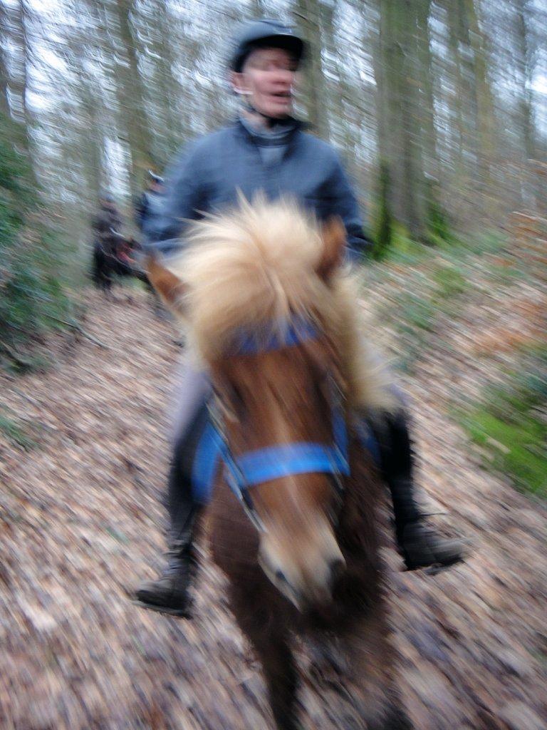 Ensor à cheval