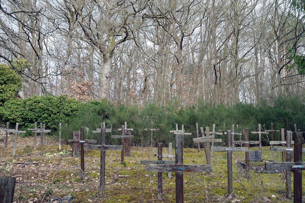 Le cimetière des fous